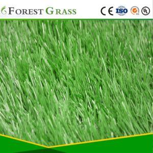 De kunstmatige Uitstekende kwaliteit van het Gebied van de Voetbal van het Gras van Sporten (SE)