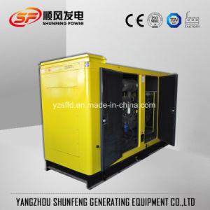 313kVA 250kw leiser Sdec elektrischer Strom-Diesel-Generator