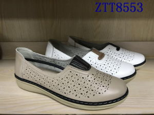 Mode de vente chaude mature de confortables chaussures femmes avec Ztt8553