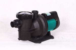 220V 50Hzの専門のプールの水ポンプ