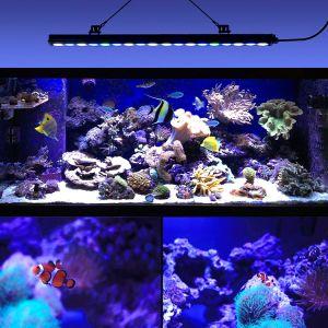 Etanche 55 85 115led Cm Aquarium Avec Barre D Eclairage Bleu Blanc