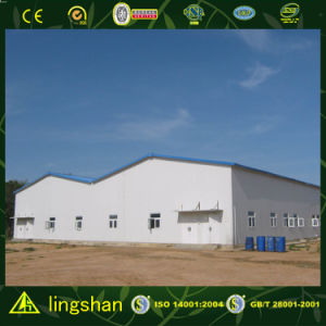 Пакгауз стальной структуры большой пяди Lingshan--ISO9001: 2008 (SSWS)