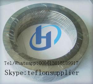 Pakking van de Wond van het Metaal PTFE de Spiraalvormige