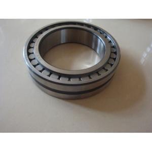 На заводе поставщиков высококачественных цилиндрический роликовый подшипник Nu2315e