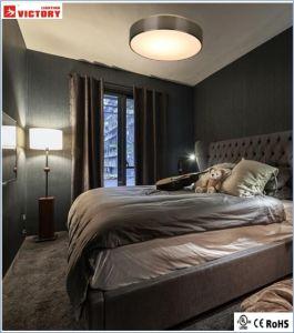 セリウムの承認のホテルの天井現代簡単なLEDの照明