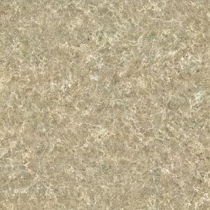 Мраморный плитка для украшения настила и стены с полным телом