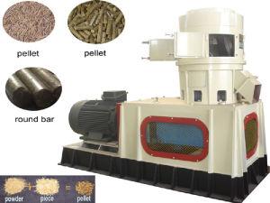 Appuyez sur la machine de briquettes de bois (SKJ)