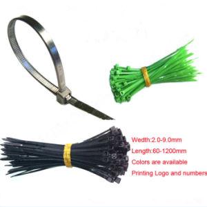 La fascetta ferma-cavo, chiusura lampo lega (KD-116) la guarnizione di nylon della plastica delle fascette ferma-cavo