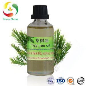 Melhor Preço do óleo da árvore de chá Anti Acne 100% natural chá puro óleo essencial de Árvore