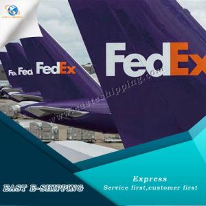 Надежные DHL и UPS/TNT/FedEx Express служба доставки