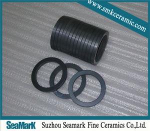 Alta resistência ao desgaste do anel de cerâmica de carboneto de silício