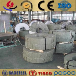 De koudgewalste Strook van het Roestvrij staal van Precisie 304 201 304L 316L 430 420