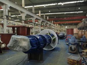Pompa ad acqua (Mixed) verticale di flusso assiale con i certificati del CE