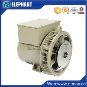 alternatore diesel del gruppo elettrogeno del singolo cuscinetto di CA di 10kw 14kVA