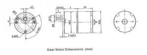 Cajero automático de imán permanente motorreductor eléctrico DC 24V