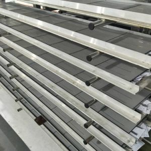 De MonoZonnepanelen van uitstekende kwaliteit van de Hoge Efficiency 300W