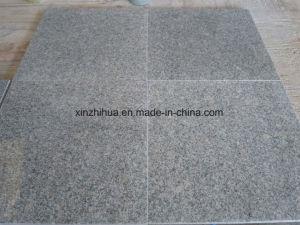 G602 naturel pour le pavage de granit gris/revêtement mural/laminés