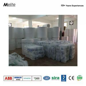 お弁当箱の泡の皿の生産ライン(MT105/120)