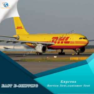A DHL confiável/UPS/TNT/FedEx Express serviço de entrega