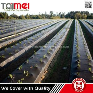 La Chine PP Tissu Tapis de mauvaises herbes