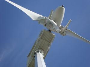 Progettato per voi il sistema della turbina del mulino a vento