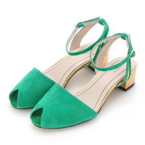 Nuevo estilo de la moda de la mujer Zapatos de Vestir Plana (HCY02-1183)