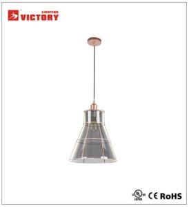 Décoration moderne de la pendaison d'accueil pendentif en verre lampe H-3771