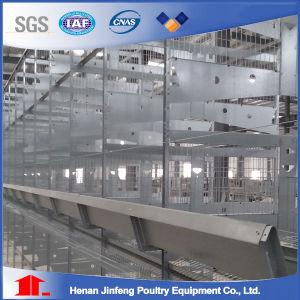 Los niveles 3-8 h pollo tipo jaula de la capa de Equipo para avicultura Equipo para la granja avícola