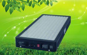 En todo el espectro de 1200W LED de alta potencia de luz para crecer plantas medicinales
