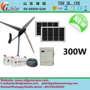 Generador eólico de híbridos de 300W para uso doméstico