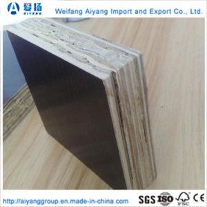 La madera de bambú Contenedor de material principal el uso de suelos de madera contrachapada