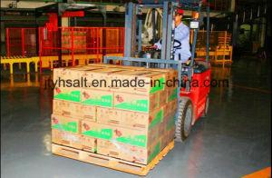 De Zak van Samll van Kintan Eetbaar zout-voor China