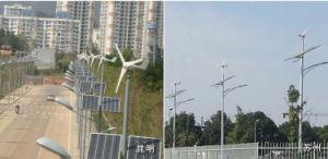 generatore di turbina del vento di 300W 12V/24V per il sistema solare domestico, generatore di vento di Wind&Solar