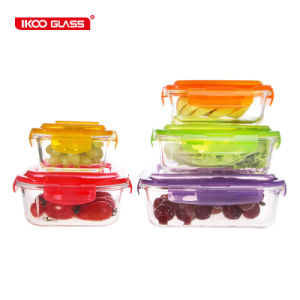 Hot Dirty 10 GCV Color Lid Knell Container Set for Food Storage Microwave Safe