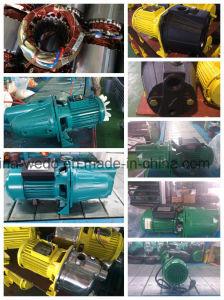Grundieren-Pumpen-hohe elektrische Wasser-Hauptpumpe des SelbstJet100 (0.75kw/1HP)