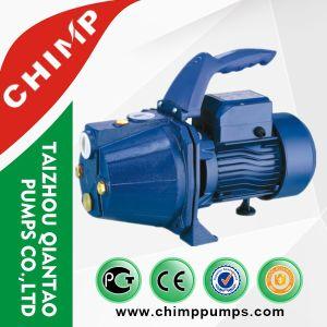 Pompe ad acqua autoadescanti del fornitore della Cina del getto superiore dei prodotti (JET-100S)