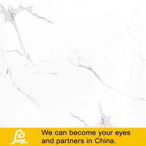 De Tegel van de Steen van Carrara verglaasde Volledige Opgepoetste Tegel