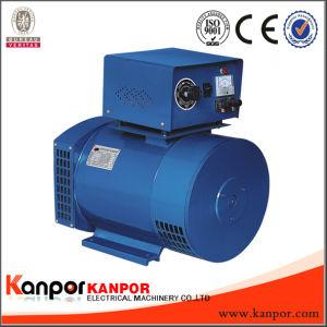 Хорошее соотношение цена AC синхронный электрический St угольных щеток генератора Sts