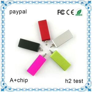 Famous小型Brand USB Flash Drive Pendrive (小型050)