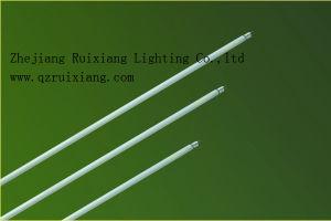 De Fluorescente Buis van de tri-fosfoor (T5-54)