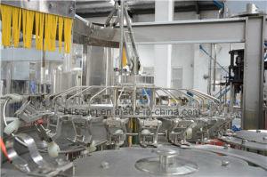 3-in-1 het Vullen van het Flessenspoelen van het water Het Afdekken Machine