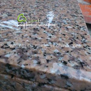 Tegel van het Graniet van de Eigenaar van de Steengroeve van China G458 de Roze voor de Vloer die van de Muur het Opruimen van de Bekleding behandelen