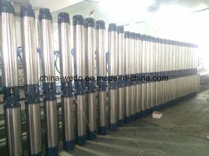 6sr de Pomp van het Bronwater van het Roestvrij staal van 6inch diep, Diepe goed Pomp Met duikvermogen