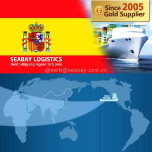 Konkurrierende Ozean-/Seefracht nach Spanien von China/von Tianjin/von Qingdao/von Shanghai/von Ningbo/von Xiamen/von Shenzhen/von Guangzhou