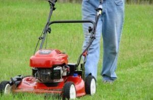잔디 깍는 기계를 위한 24V 15ah Li 이온 건전지