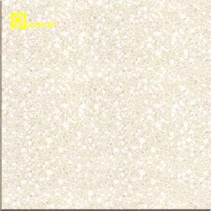 花こう岩Look Polished Porcelain Tiles 800X800