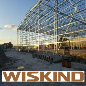 Estructura de acero de la luz de prefabricados Wiskind