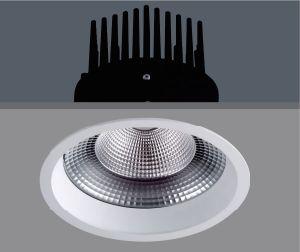 Alta potencia con precio competitivo COB LED Luz abajo