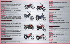 As peças do motociclo Yog Lâmpada Traseira de motocicleta para Gênesis Haojue125-7 HJ