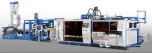 machine de thermoformage PP tasse jetable Wirh dans une seule ligne de l'extrudeuse